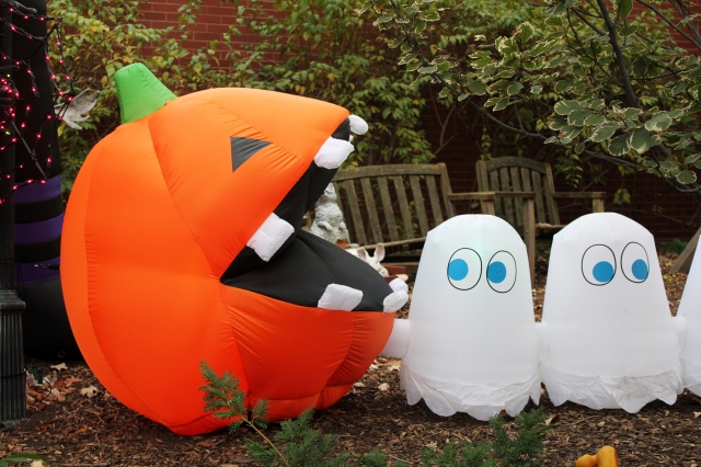 Pacman pumpkins, Quinn Norton