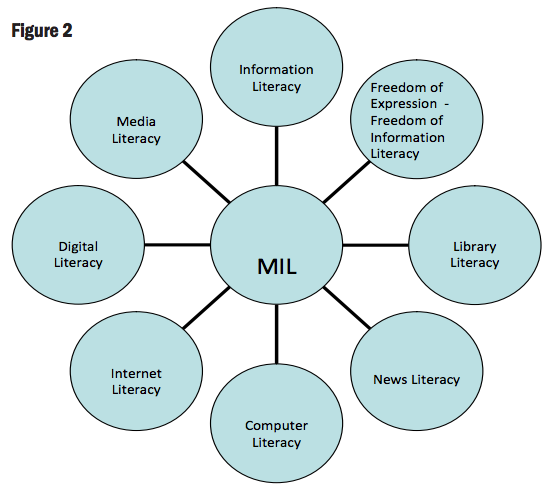 UNESCO multiple literacies